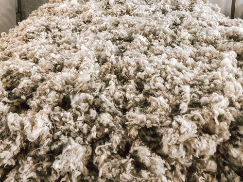 les avantages de la laine